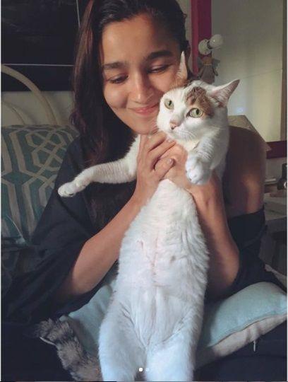 Alia Bhatt Cat pictures