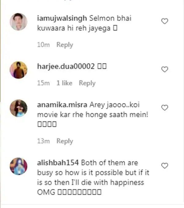 Katrina Kaif and Vicky Kaushal social media comments