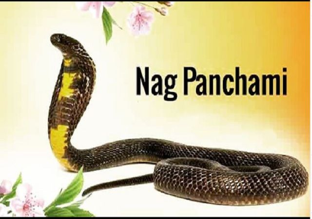Happy Nag Panchmi 2020 photo