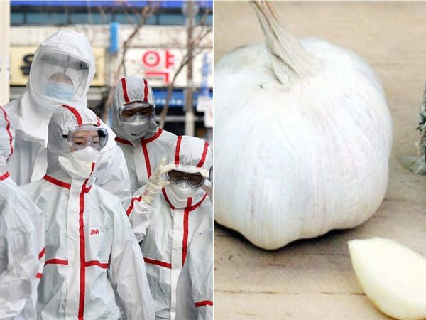 Coronavirus if garlic is helpful to protect from deadly virus know how to deal with it and who are more prone to it